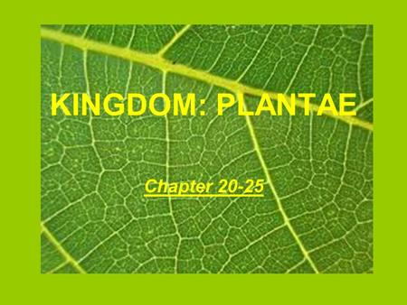 KINGDOM: PLANTAE Chapter 20-25. Vocabulary Adaptation Alternation of generations Colonial Dicots Enclosed seeds Flowers fruit Leaves Monocots Multicellular.