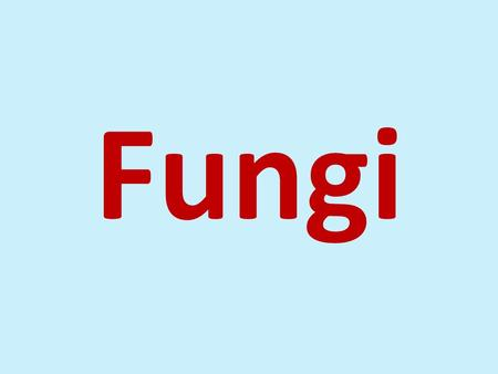 Fungi. Characteristics of fungi  Eukaryote  Heterotroph  Cell wall is present  Do not contain chlorophyll  Heterotrophs  Decomposers (organic matter)