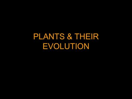 PLANTS & THEIR EVOLUTION. The General Plant Life Cycle: Alternation of Generations Sporophytes are the diploid stage that grow by mitosis from a fertilized.