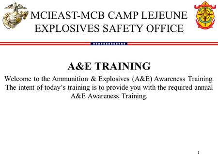 1 A&E TRAINING Welcome to the Ammunition & Explosives (A&E) Awareness Training. The intent of today's training is to provide you with the required annual.