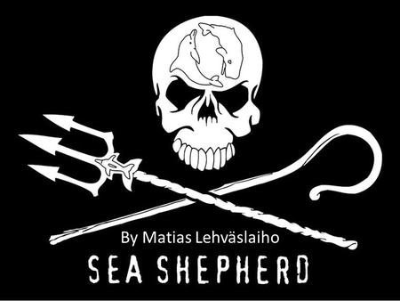 By Matias Lehväslaiho. The History of the Organization The Sea Shepherd Conservation Society began in 1979 Two years before the NGO began, Paul Watson.