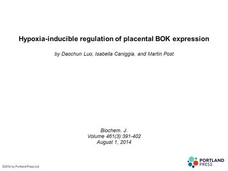 Hypoxia-inducible regulation of placental BOK expression by Daochun Luo, Isabella Caniggia, and Martin Post Biochem. J. Volume 461(3):391-402 August 1,