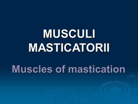 Muscles of mastication MUSCULI MASTICATORII.  4 pairs of muscles attached to the mandible  Movement of temporomandibular joint  Arise from the bones.