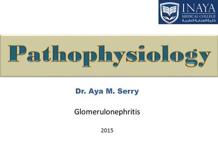 Dr. Aya M. Serry Glomerulonephritis 2015. Glomerul/o/nephr/it is glomeruli kidney inflammation Alternative names: acute/chronic nephritis, glomerular.
