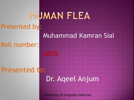 Presented to: Dr. Aqeel Anjum Presented by: Muhammad Kamran Sial Roll number: M076 University Of Sargodha Pakistan.