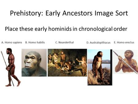 Prehistory: Early Ancestors Image Sort Place these early hominids in chronological order A. Homo sapiens D. Australopithacus E. Homo erectusC. NeanderthalB.