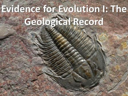 Evidence for Evolution I: The Geological Record. How old is the Earth? Creationism: 5 000 – 10 000 years Science: 4.54 billion years.