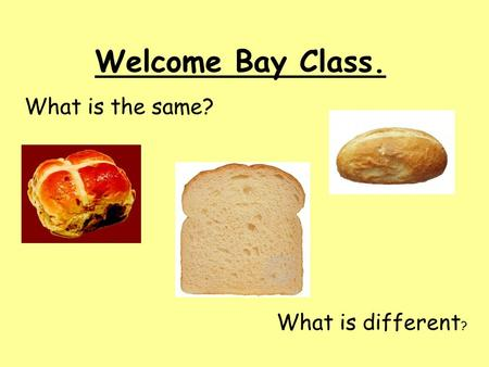 Welcome Bay Class. What is the same? What is different ?