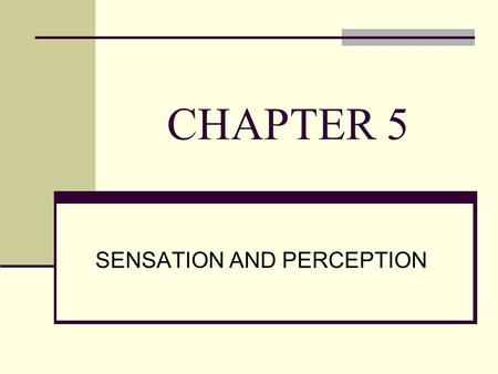CHAPTER 5 SENSATION AND PERCEPTION. List the five senses below 1. 2. 3. 4. 5.