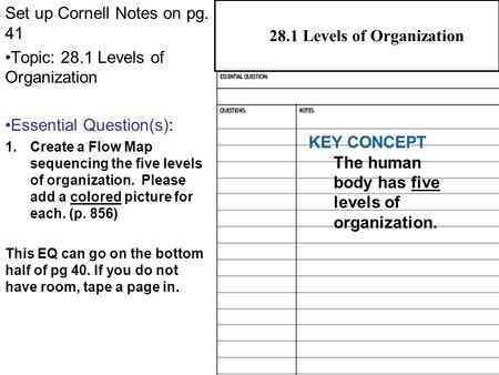 28.1 Levels of Organization Set up Cornell Notes on pg. 41 Topic: 28.1 Levels of Organization Essential Question(s): 1.Create a Flow Map sequencing the.