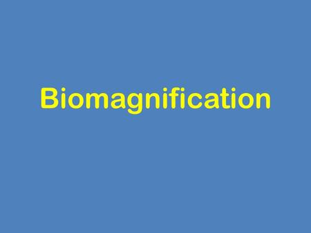 Biomagnification.