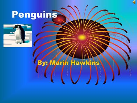 Penguins By: Marin Hawkins Introduction More like a bird than a penguin, the penguin is very similar to a bird. Come and find out about it's life while.