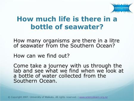 © Copyright 2007. University of Waikato. All rights reserved. | www.sciencelearn.org.nz How much life is there in a bottle of seawater? How many organisms.