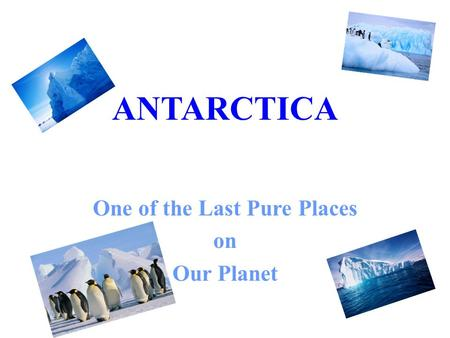 ANTARCTICA One of the Last Pure Places on Our Planet.
