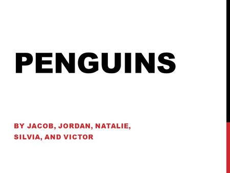 PENGUINS BY JACOB, JORDAN, NATALIE, SILVIA, AND VICTOR.