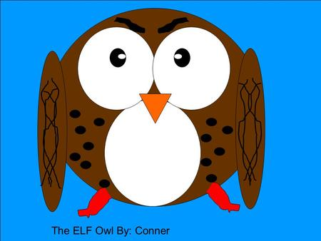 The ELF Owl By: Conner. Description Coloring: Size: Physical Characteristics: Source #__16, 4_______ The Elf Owl has a white eye brow mark above the eyes,