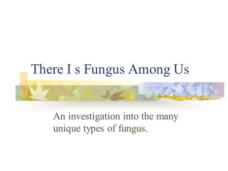 There I s Fungus Among Us An investigation into the many unique types of fungus.
