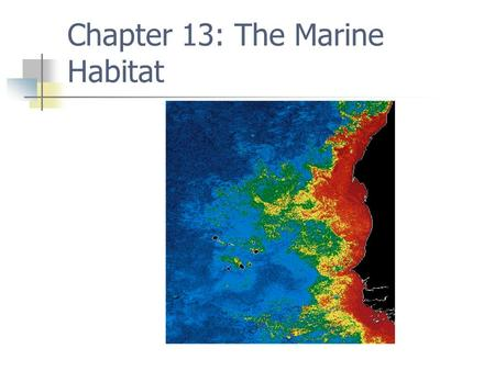 Chapter 13: The Marine Habitat