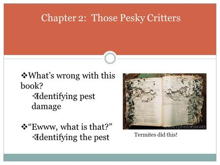 "Chapter 2: Those Pesky Critters  What's wrong with this book?  Identifying pest damage  ""Ewww, what is that?""  Identifying the pest Termites did this!"