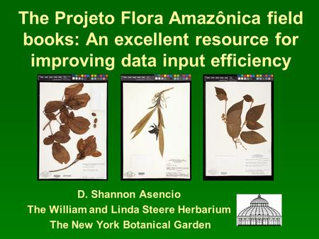 The Projeto Flora Amazônica field books: An excellent resource for improving data input efficiency D. Shannon Asencio The William and Linda Steere Herbarium.
