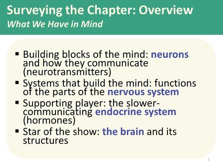 Surveying the Chapter: Overview What We Have in Mind  Building blocks of the mind: neurons and how they communicate (neurotransmitters)  Systems that.