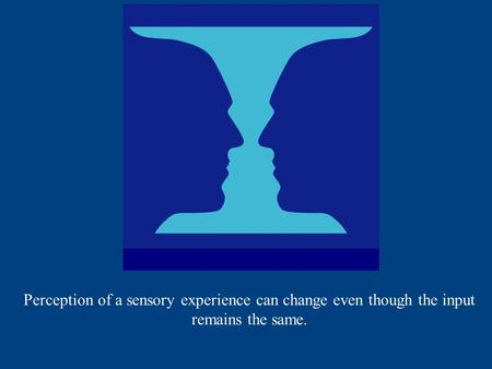 Perception of a sensory experience can change even though the input remains the same.