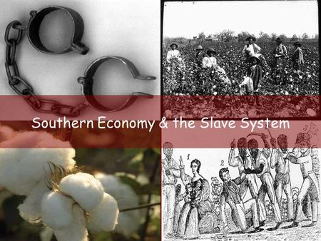 Southern Economy & the Slave System. Economy Grew cash crops on plantations: AGRICULTURE Rice Indigo Tobacco.