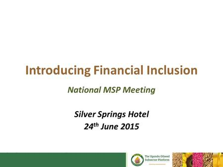 Introducing Financial Inclusion National MSP Meeting Silver Springs Hotel 24 th June 2015.