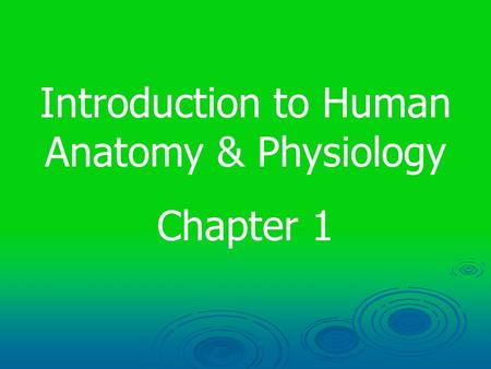 Introduction to Human Anatomy & Physiology Chapter 1.