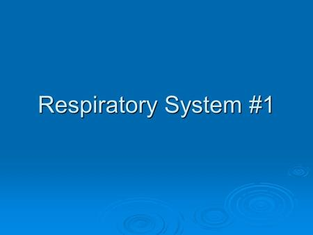 Respiratory System #1. Types of Respiration External: Actual breathing, it is the mechanical way to get oxygen into the lungs Internal: Occurs in the.