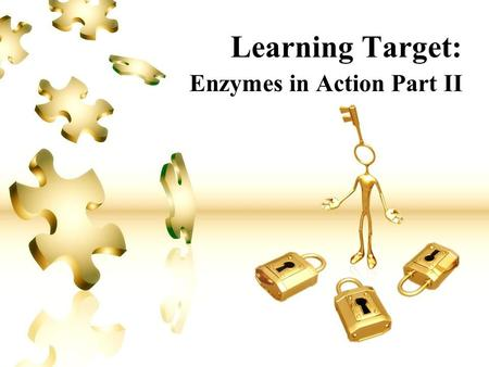 Learning Target: Enzymes in Action Part II. Learning Target #2: Enzymes I Can… Describe the general role of enzymes in metabolic cell processes. I Will…