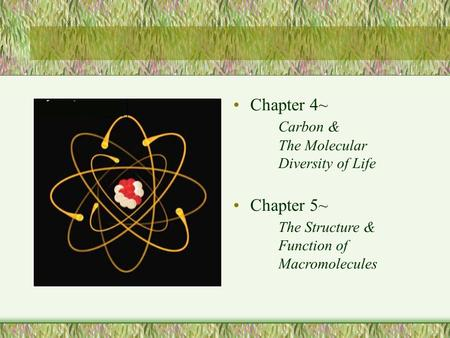 Chapter 4~ Carbon & The Molecular Diversity of Life Chapter 5~ The Structure & Function of Macromolecules.