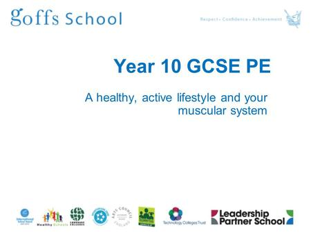 Year 10 GCSE PE A healthy, active lifestyle and your muscular system.