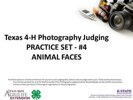 Texas 4-H Photography Judging PRACTICE SET - #4 ANIMAL FACES The Photo classes in this Power Point are for you to try your judging skills. Select a class.