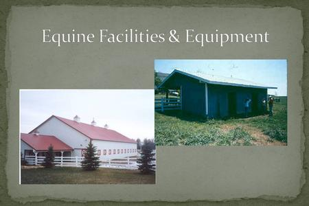 Provide for the welfare of horses Provide for the safety, health and comfort of human handlers Provide easy access for suppliers, clients Be cost-effective.
