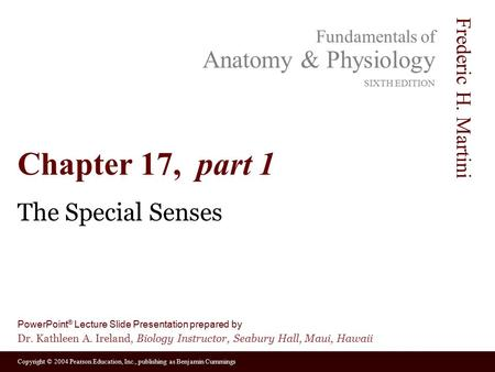 Chapter 17, part 1 The Special Senses.