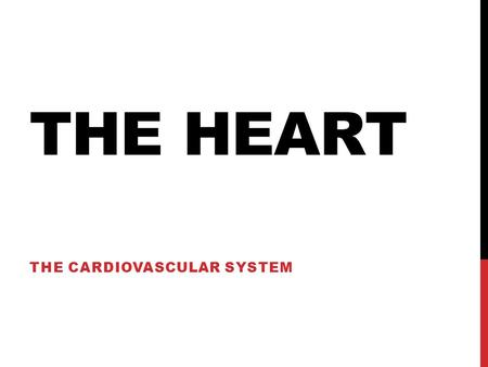 THE HEART THE CARDIOVASCULAR SYSTEM. HEART CHAMBERS Atria – two upper chambers (receiving); R & L Ventricles – two lower chambers (discharging); R & L.