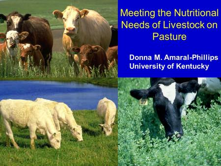 Meeting the Nutritional Needs of Livestock on Pasture Donna M. Amaral-Phillips University of Kentucky.