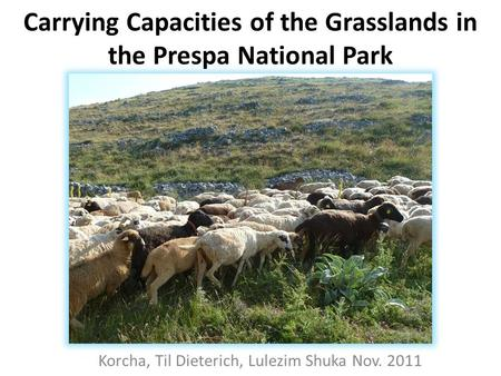 Carrying Capacities of the Grasslands in the Prespa National Park Korcha, Til Dieterich, Lulezim Shuka Nov. 2011.