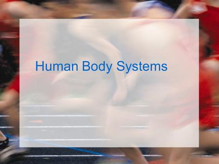 Human Body Systems. Organization of the Body List the levels of organization in a multicellular organism, from smallest to largest. –Cells –Tissues –Organs.