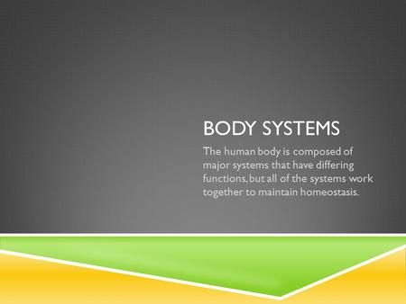 BODY SYSTEMS The human body is composed of major systems that have differing functions, but all of the systems work together to maintain homeostasis.