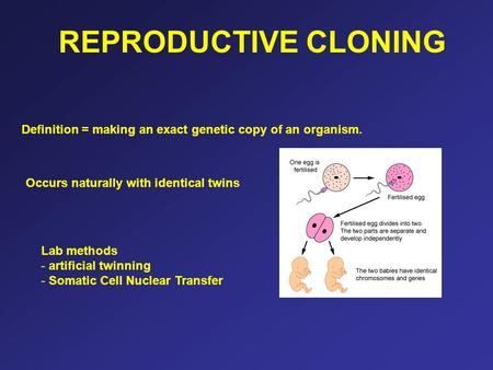 REPRODUCTIVE CLONING Definition = making an exact genetic copy of an organism. Occurs naturally with identical twins Lab methods - artificial twinning.