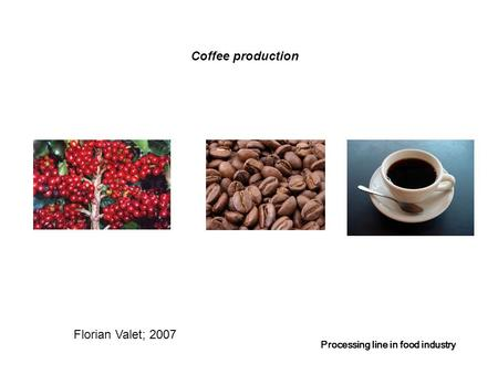 Coffee production Processing line in food industry Florian Valet; 2007.