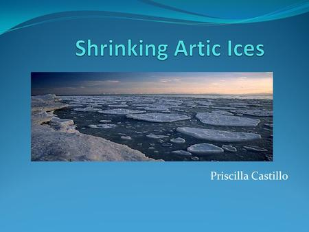 Priscilla Castillo. What Are Artic ices? An Artic Ice is a boulder of ice, in other terms a glacier. A majority of the Artic ice is underwater. Keeping.