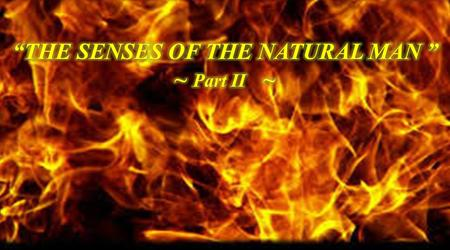 A SHORT REVIEW OF THE SENSES OF THE NATURAL MAN PART I ACTS 8:1-2. 1 And Saul was consenting unto his death. And at that time there was a great persecution.