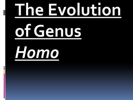 "The Evolution of Genus Homo. Fig. 7-8, p. 165 Homo habilis  ""Handy man.""  The first fossil members of the genus Homo appearing 2.5 million years ago,"