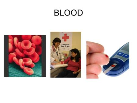 BLOOD.  Blood transports substances and maintains homeostasis in the body  Only fluid tissue in human body Hematophobia = fear of blood.
