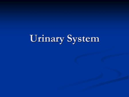 Urinary System. Quick Review Tell your neighbor your favorite movie Tell your neighbor your favorite movie Tell your neighbor what you would do with 1,000,000.