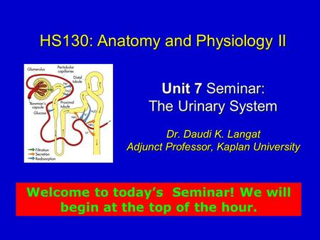 HS130: Anatomy and Physiology II