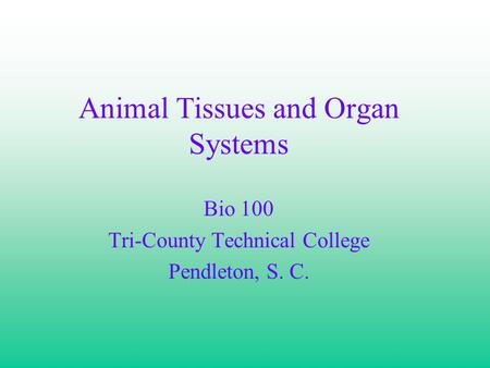 Animal Tissues and Organ Systems Bio 100 Tri-County Technical College Pendleton, S. C.